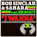 Bob Sinclar & Sahara - I Wanna (Ft Shaggy)